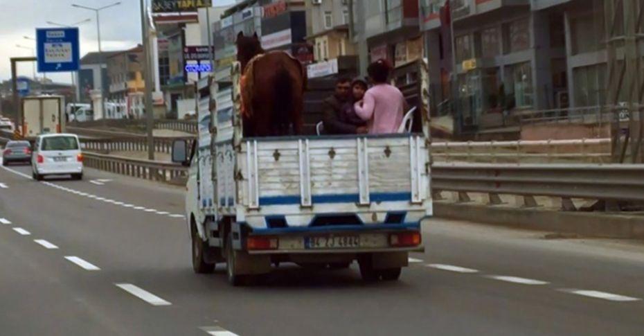 3 kişilik ailenin kamyon kasasında atla tehlikeli yolculuğu kamerada