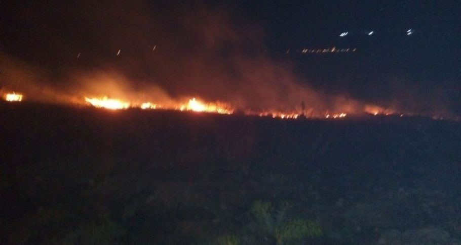 Adıyaman'da korkutan orman yangını