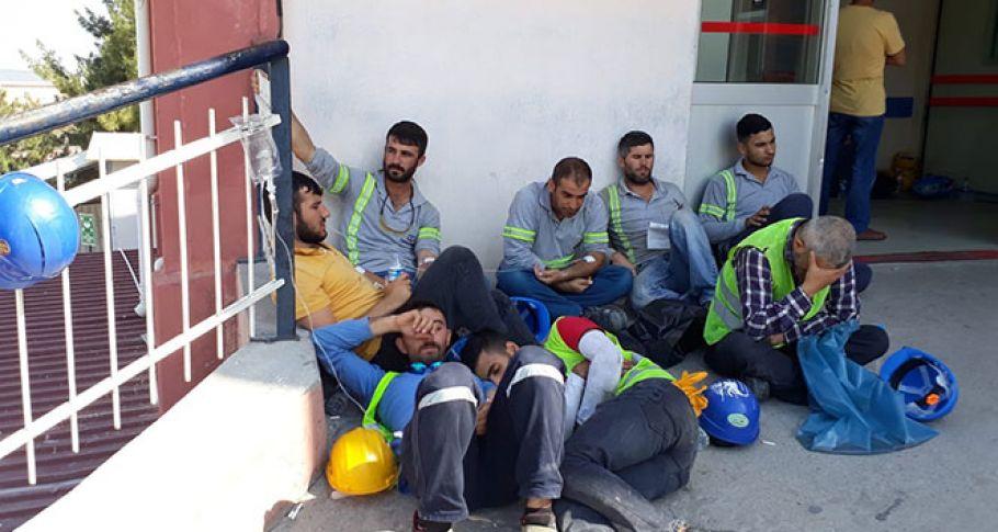 Aliağa'da gıda zehirlenmesi bilançosu: Bin 284 işçi hastanelik oldu