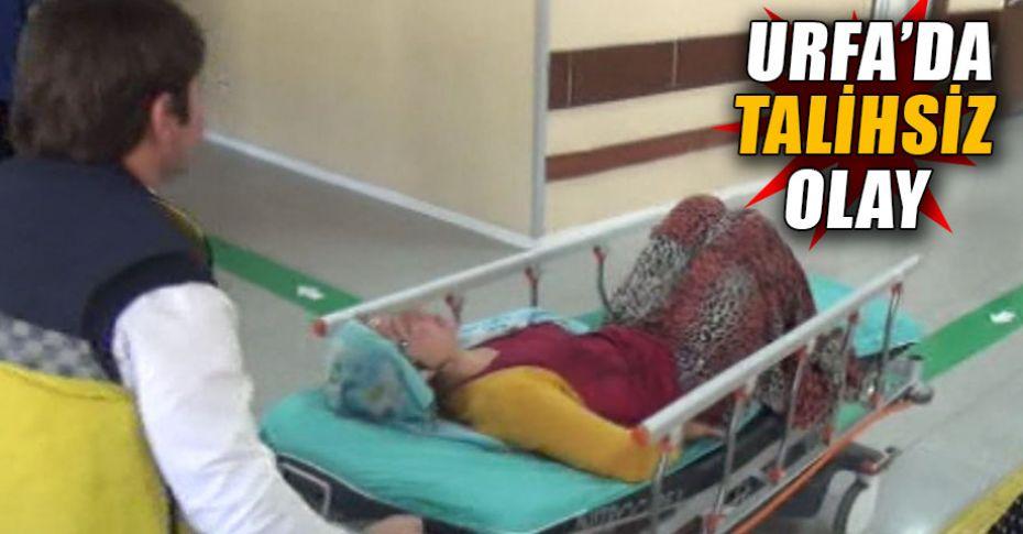 Atın çiftesi kadını hastanelik etti!