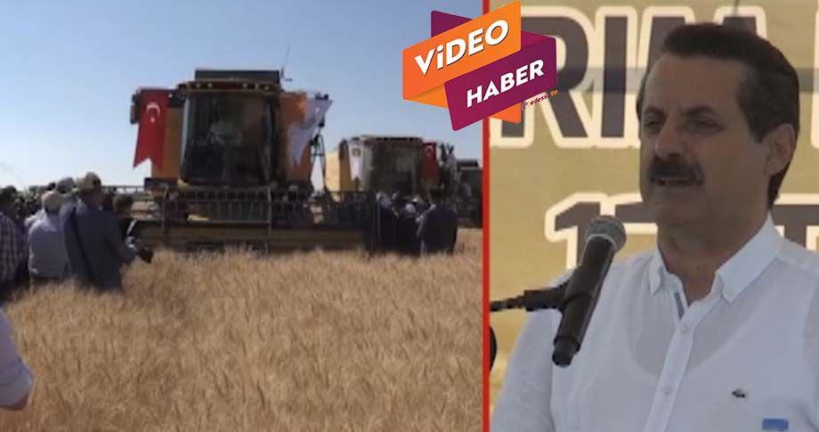 Bakan Çelik, buğday fiyatlarını açıkladı