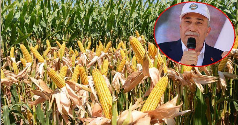 Bakan Fakıbaba, mısır alım fiyatını belirledi