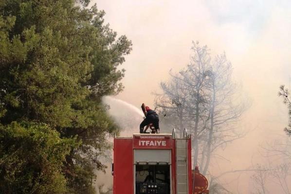 Bakan Pakdemirli yangınlarla ilgili son durumu paylaştı