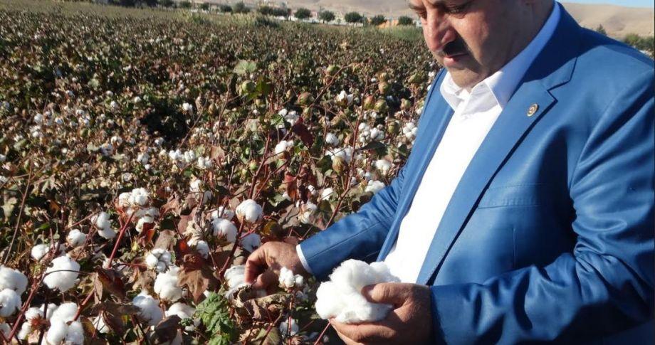 Başkan Eyyüpoğlu: Şanlıurfa Çİftçisi can çekişiyor