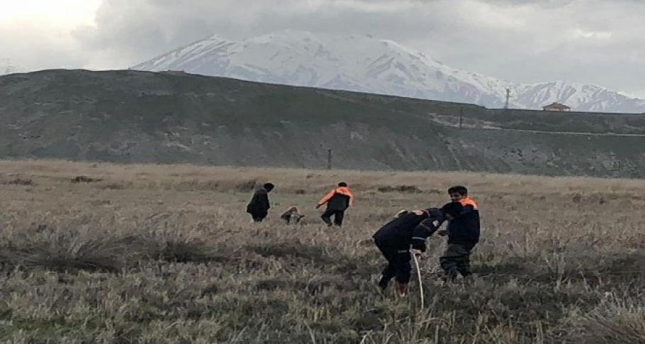 Bataklığa saplanan inekleri AFAD ekibi kurtardı