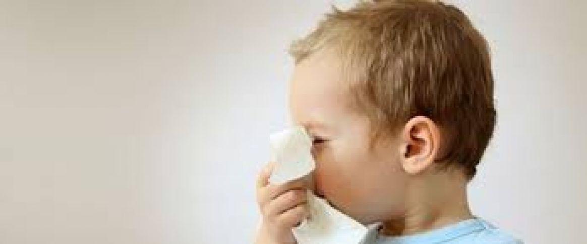 Bebek Sağlığını Etkileyen Besinler