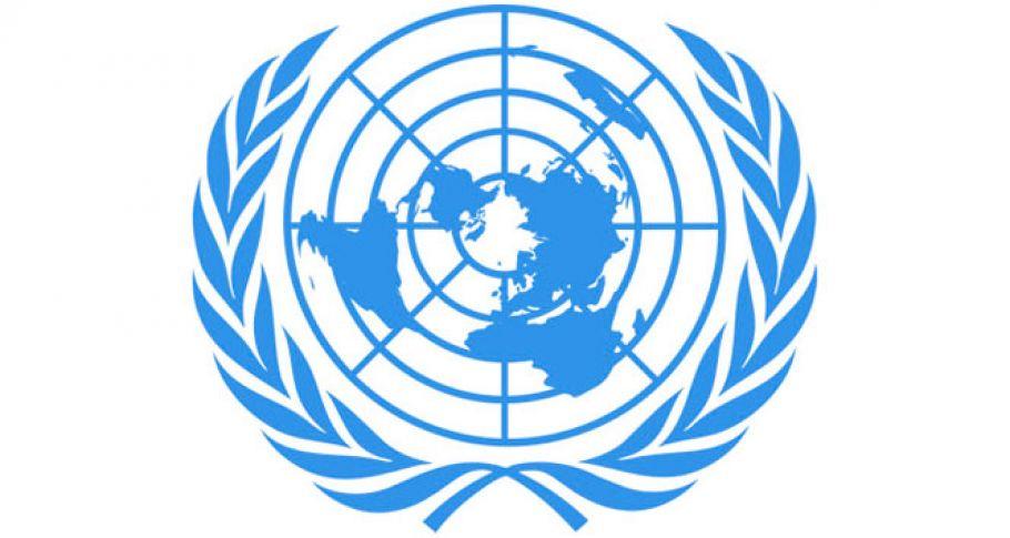 BM: 'Son 1 yılda 300 binden fazla Afgan yerlerinden edildi'