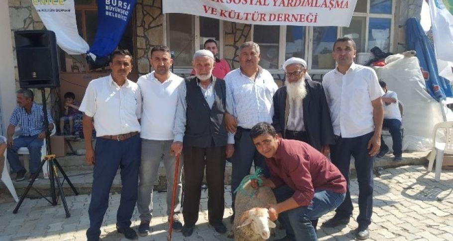 Bursa'da ağalık müzayedesinde bir kuzu 25 bin liraya acılıcı buldu.