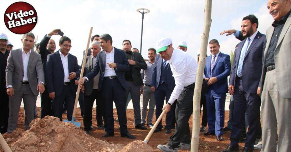Büyükşehir, 2 milyon ağaç ve bitkiyi toprakla buluşturacak