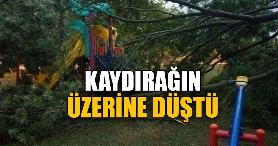 Çocuk parkında tehlikeli anlar!
