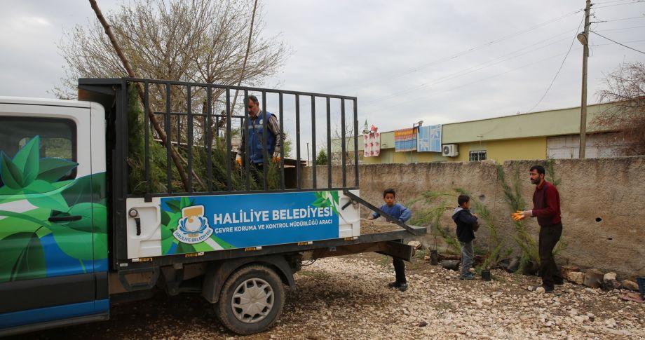 Daha yeşil bir Haliliye' için ekipler iş başında (VİDEOLU)