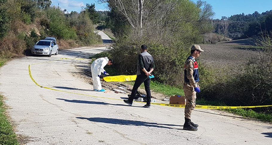 Döverek öldürüp yol kenarına attılar