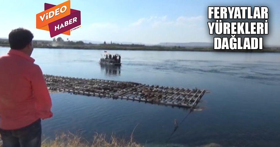 Fırat nehrine giren Suriyeli yaşamını yitirdi