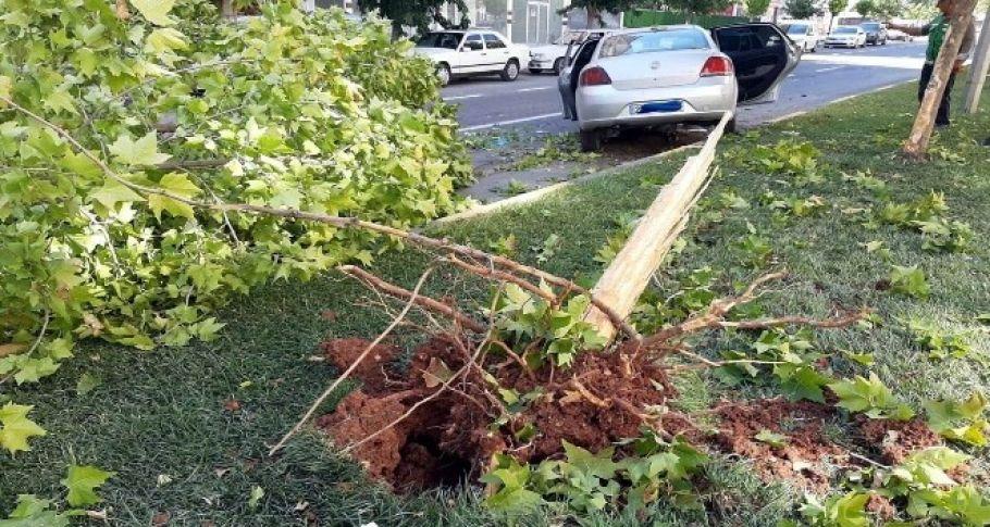 Gaziantep'te ehliyetsiz sürücü dehşeti