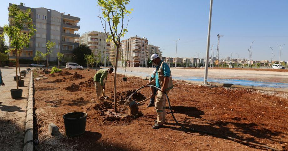 Haliliye'de park düzenleme çalışması