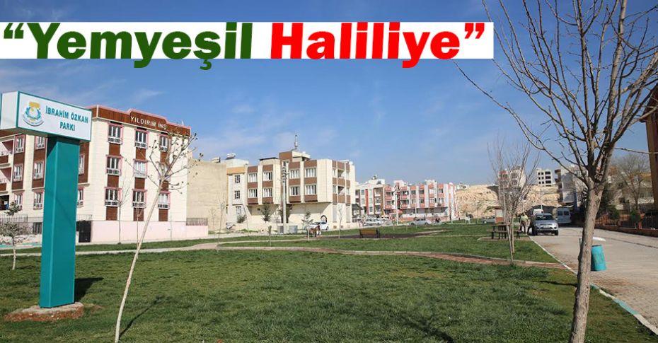 Haliliye'de yeni parklar hizmete sunuluyor