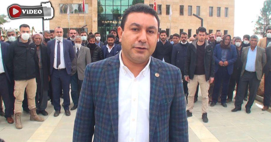 Harran'da aileler arasında kavga! Özyavuz'dan açıklama geldi