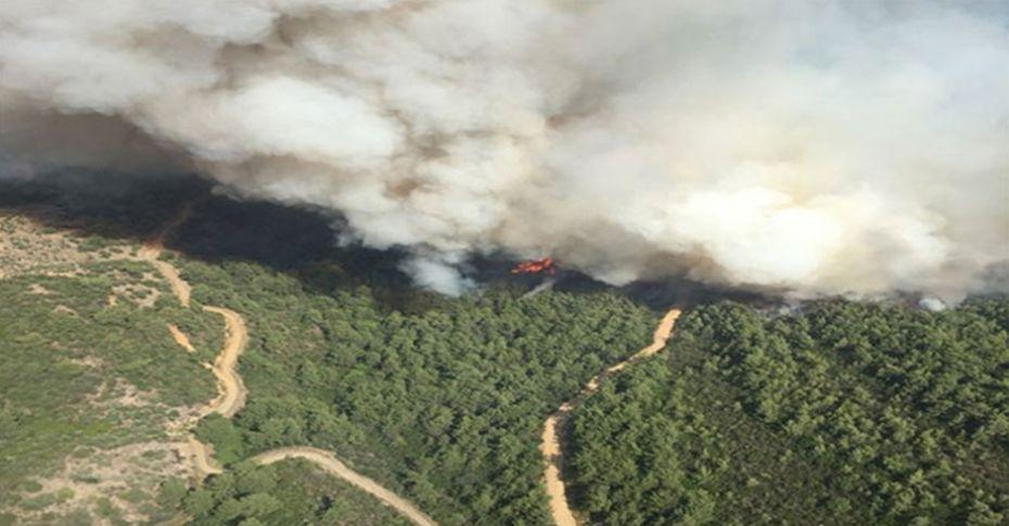İzmir'de orman yangını! 3 helikopter, 2 uçak müdahale ediyor...