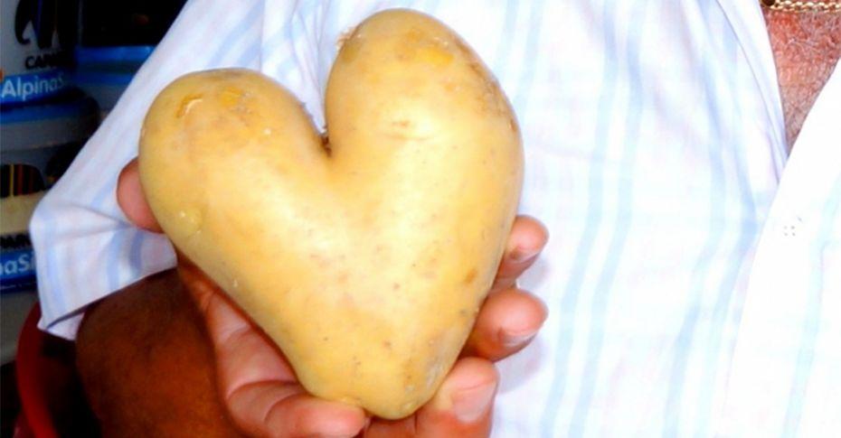 Kalp görünümlü patates şaşırttı