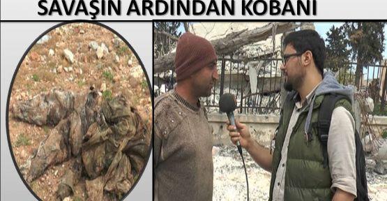 KOBANİ'DE IŞİD CESETLERİ HASTALIK SAÇIYOR !