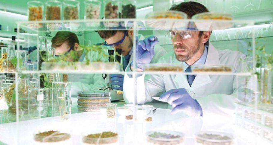 Laboratuvar ortamında et ve süt üretimi başladı