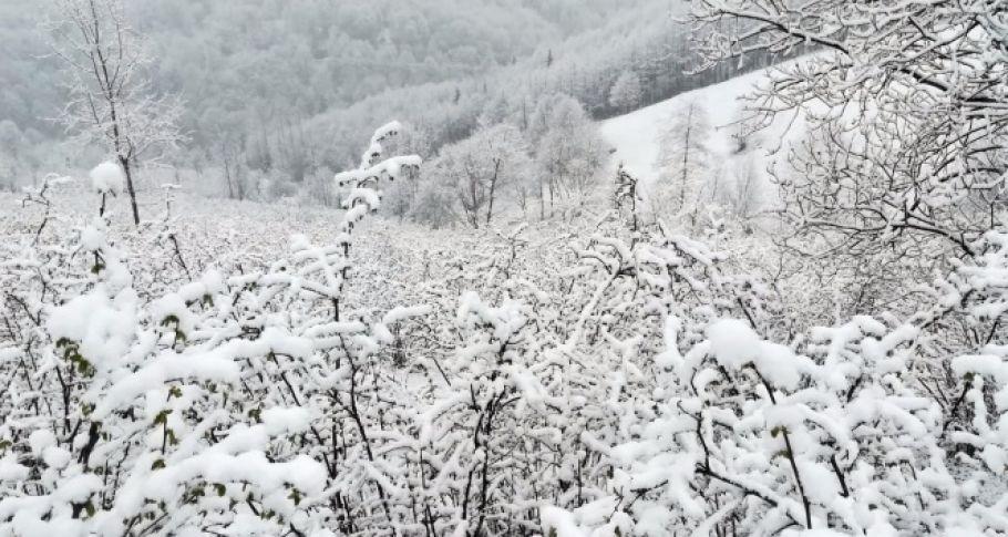Nisan karı şaşırttı
