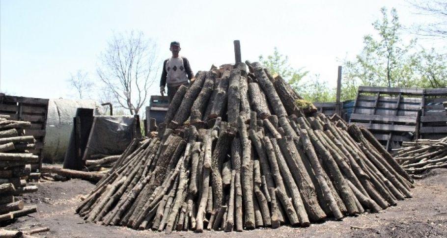 Odunları yakarak tonunu 4 bin 500 liraya satıyorlar