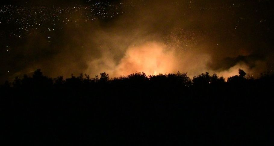 Samandağ'da zeytinlik alanda korkutan yangın