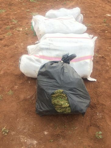 Şanlıurfa İl Jandarma Komutanlığı Ekipleri Uyuşturucu Tacirlerine Göz Açtırmıyor