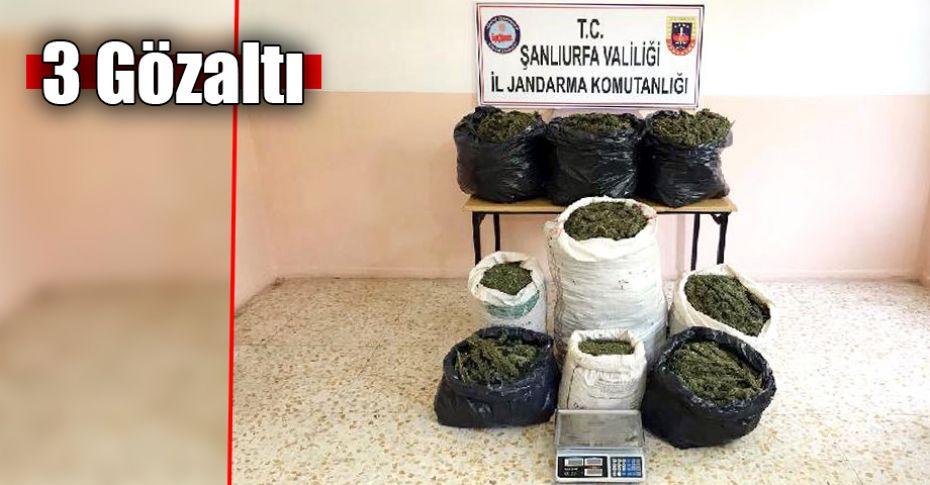 Şanlıurfa'da 83 kilo esrar ele geçirildi