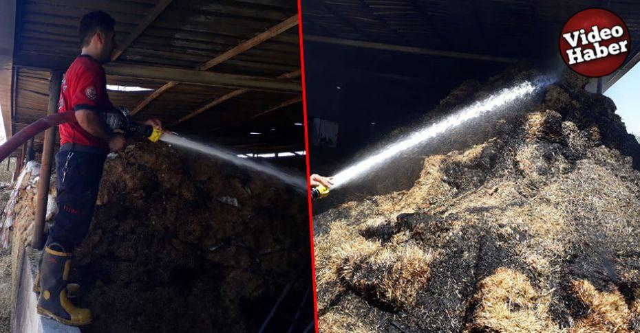 Şanlıurfa'da çiftlikte yangın çıktı!