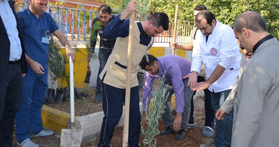 Şanlıurfa'da hastanede ağaç dikimi