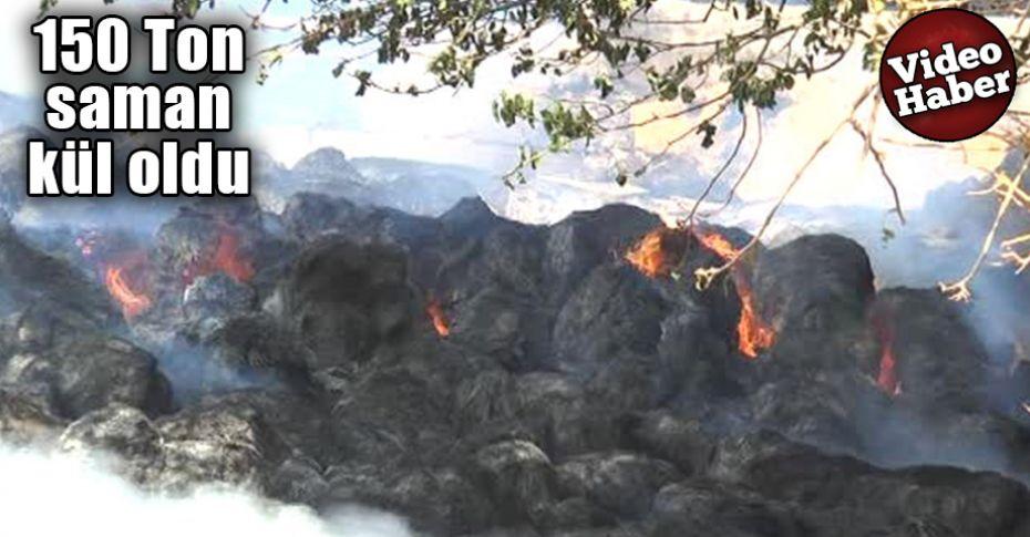 Şanlıurfa'da hayvan çiftliğinde yangın çıktı