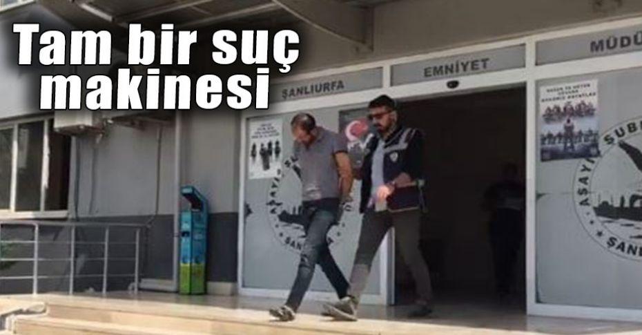 Şanlıurfa'da hırsızlık operasyonu!