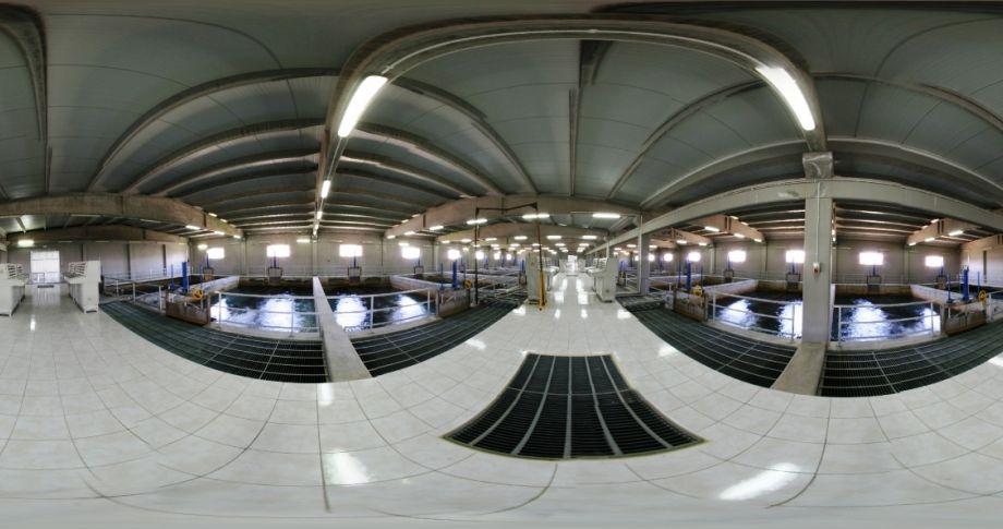 Şanlıurfa'da içme suyu şebekelerine arıtma sistemi...