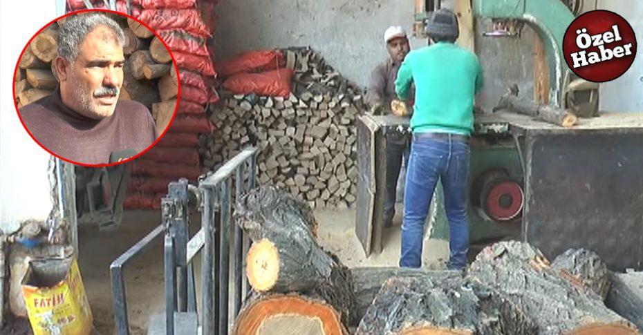 Şanlıurfa'da kaçak odunculara esnaftan tepki