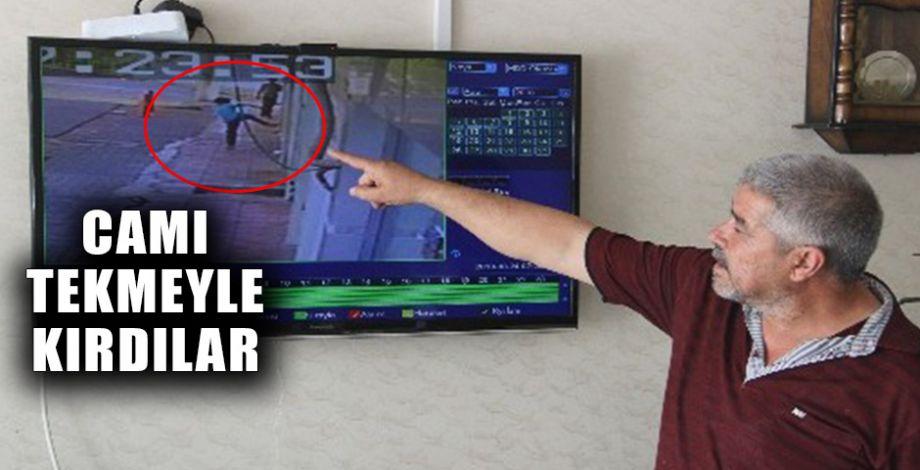 Şanlıurfa'da kuş hırsızları kameraya yakalandı