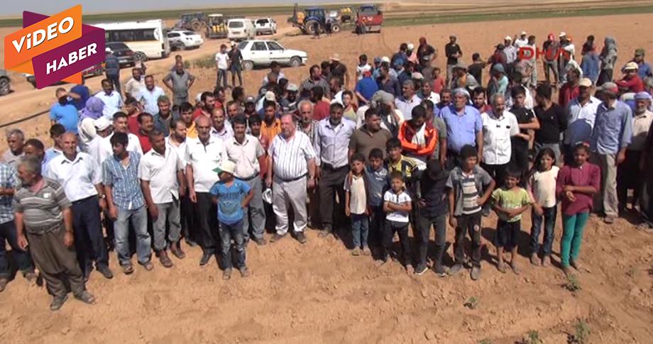 Şanlıurfa'da pamuk üreticilerinin susuzluk isyanı