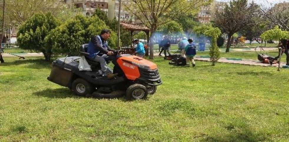 Şanlıurfa'da yaprak biti ile mücadele