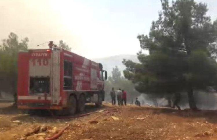 Tarihi Göbeklitepe Yakınlarında Orman Yangını !