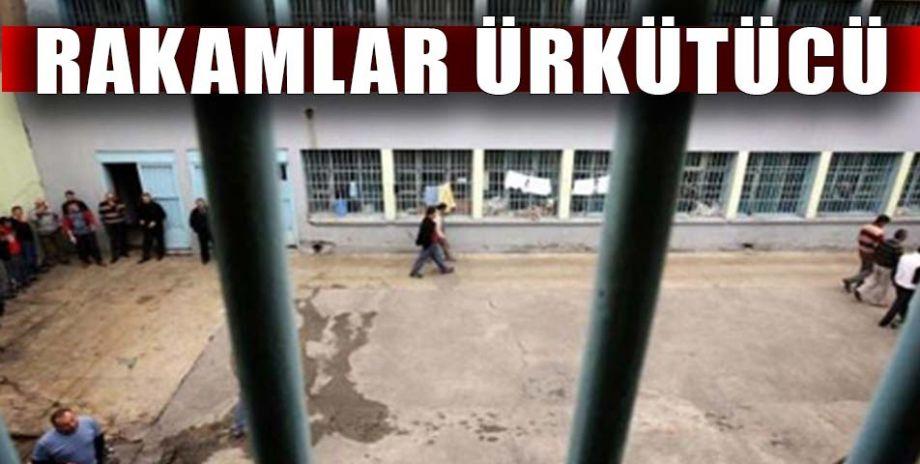 Türkiye'de hükümlü sayısında ciddi bir artış yaşandı
