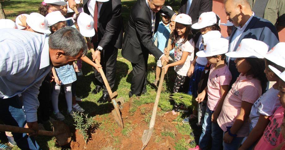 """Urfa'da  """"Zeytin Temalı Ağaçlandırma Kampanyası"""" ... Minik Öğrenciler İlk Fidanlarını Dikti"""