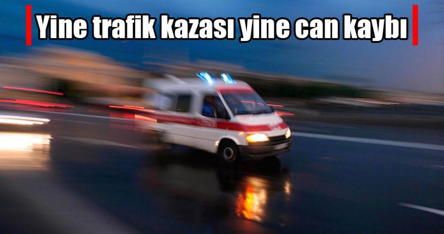 Viranşehir'de trafik kazası!