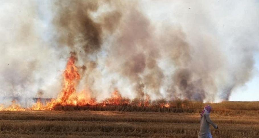 YPG/PKK Deyrizor'da sivillerin tarım arazilerini yaktı